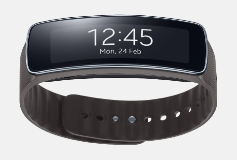 Samsung Gear Fit wristband